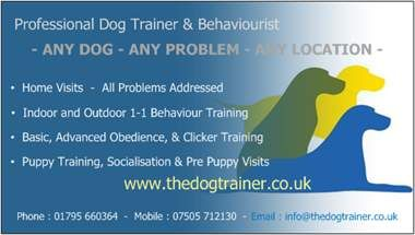 Dog training home visit services for kent and south east england