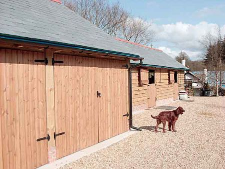 Stables and dog kennels