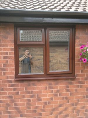 Replacement Window in Rosewood
