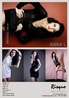 Risque model anna