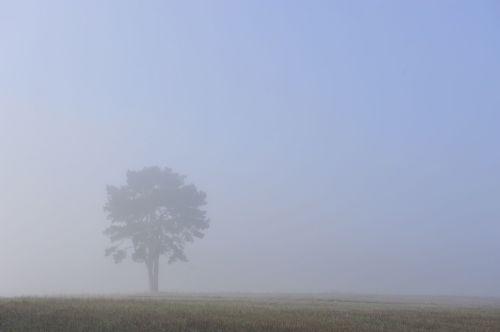 Landscape shot: commercial work.