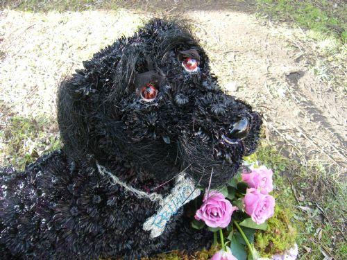 Bruno,a black lab inb flowers,funeral sculpture.