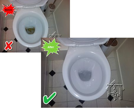 Toilet cleans