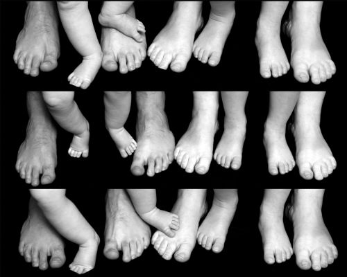 A family of feet !.