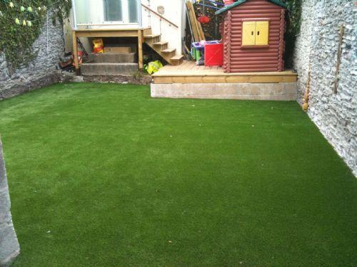 Small domestic garden. Plymouth.