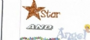 Star and Angel logo