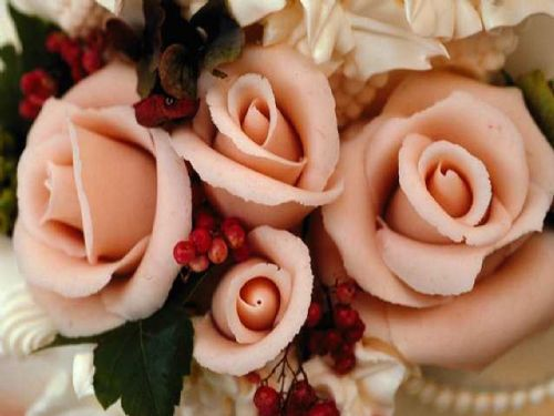 Pink flowers. - Wedding Planners Biggleswade