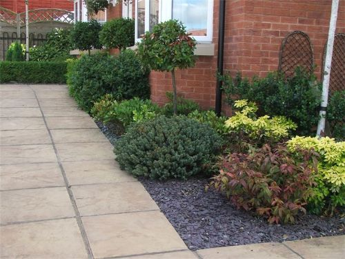 Cleancut lawn and garden services gardener in llansamlet for Low maintenance border shrubs