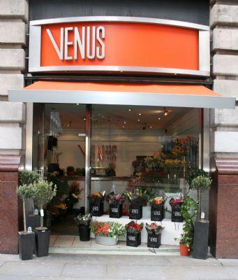Venus Flowers Manchester