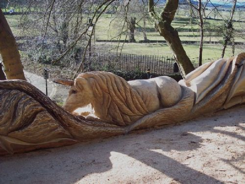 Thomas craggs tree sculpting chainsaw carver in consett uk