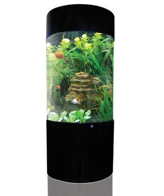 An example of an upright column aquarium available from Designer ...