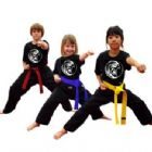Kickboxing - Little Ninjas