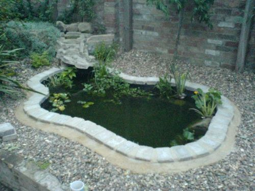 Lloyds gardens landscape gardener in burwell cambridge uk for Garden pond edging