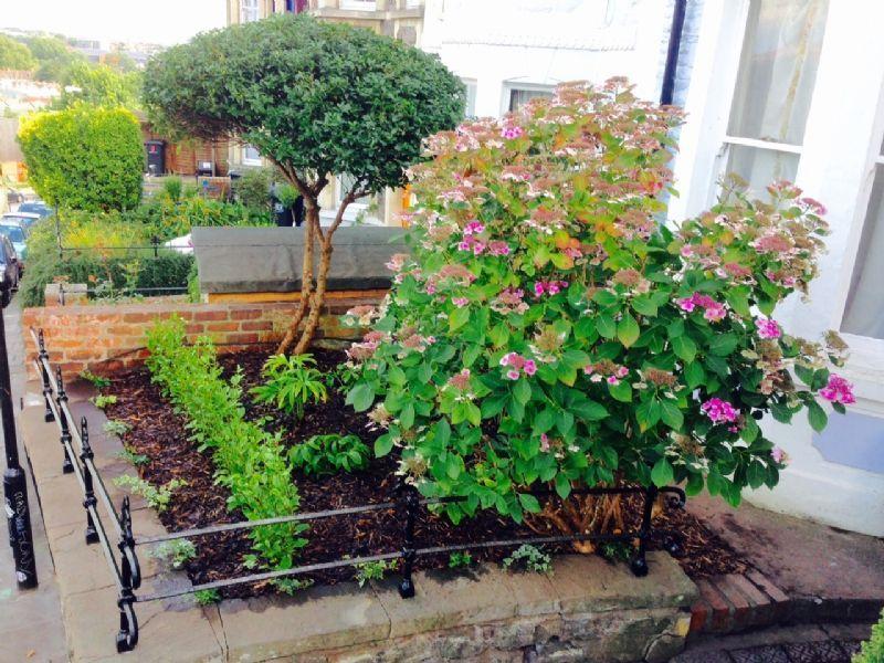 Bristol Gardens - Landscape Gardener In Keynsham Bristol (UK)