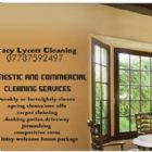 cleaners - Tracy Lycett Cleaning
