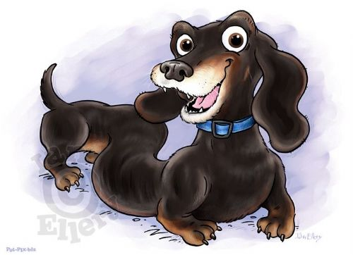 Pet Portrait - Cartoonists Hastings