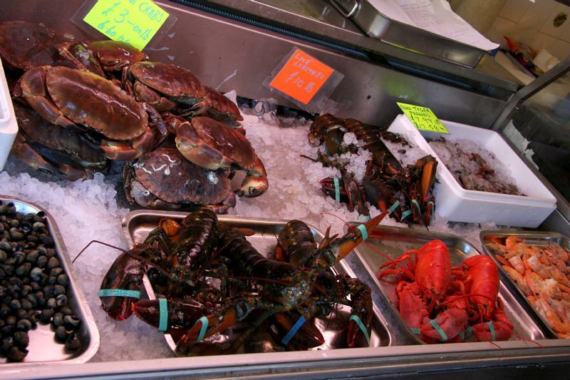 Buy fish online fishmonger in leigh on sea uk for Buy fish online