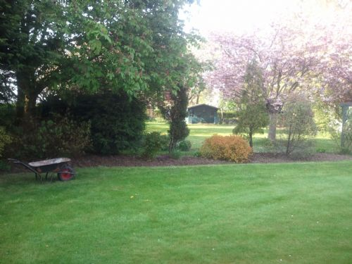 Tidy Garden Company Gardener in Grimsby UK