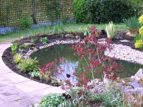 Aquajoy water gardens ltd pond cleaning company in for Garden pond cleaning
