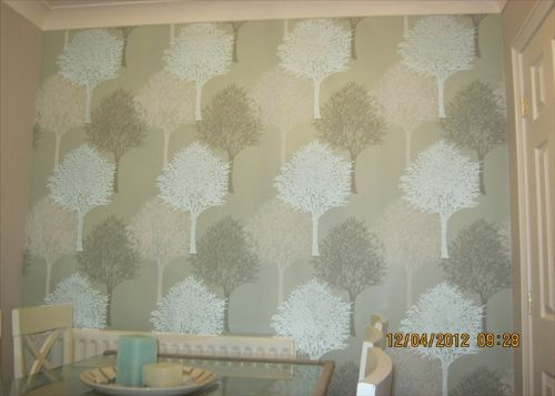 Aps painting decorating decorator in sunderland uk for Wallpaper for dining room feature wall