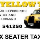 Taxis - The Yellow Taxi
