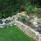Property Maintenance - LawN & Border