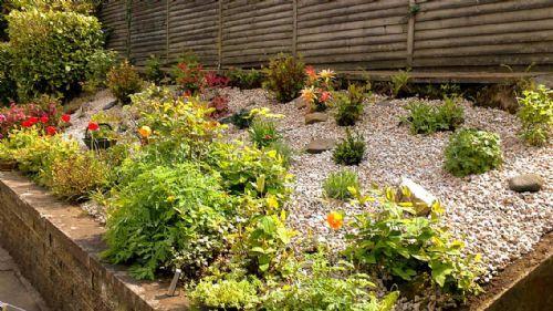 Neil McIntosh Landscape Design - Landscape Gardener in ...