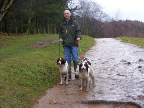 Dog Walking Services Calverley