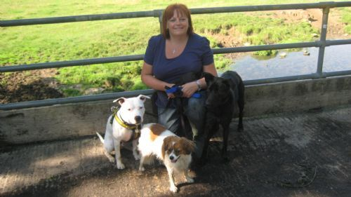 Leicester Dog Rescue Huncote