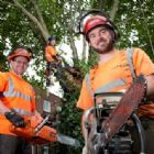 Arboricultural Services - Greater Manchester TreeStation Ltd