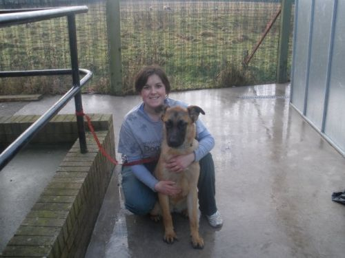 Whitley Bay Cat And Dog Shelter
