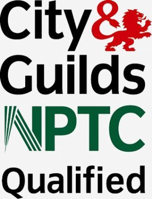 Profile(tree Work In Essex)_550384on City And Guilds Logo
