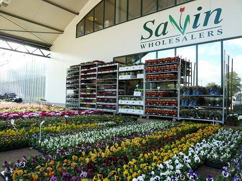 Http Www Freeindex Co Uk Profile Savin Wholesalers 560435 Htm