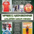 Kickboxing - Vipers Kickboxing