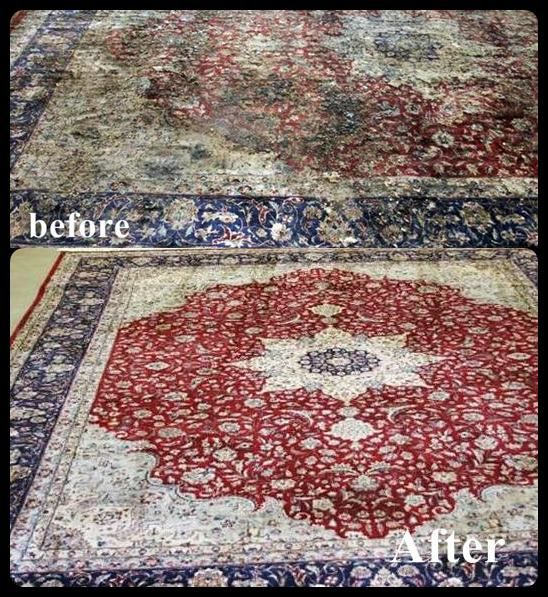 Majestic Carpet Cleaning, Rug Cleaning & Repair Services