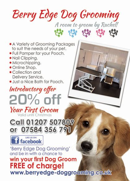 Berry edge dog grooming ltd dog grooming company in consett uk