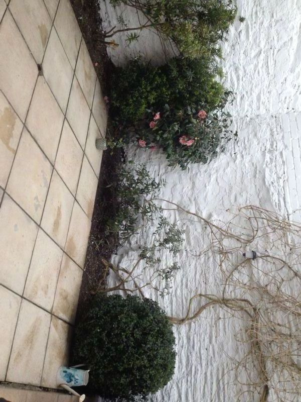 Home And Garden Maintenance Company In