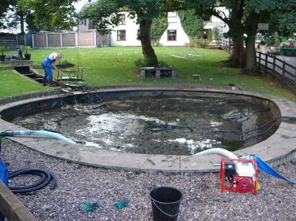 Clean clear ponds pond cleaning company in tettenhall for Pond maintenance companies