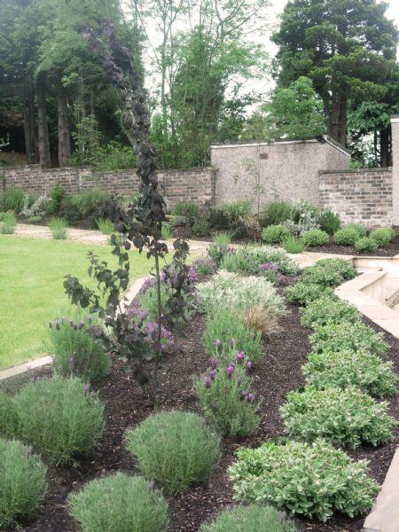 Garden Designer In Edinburgh (UK