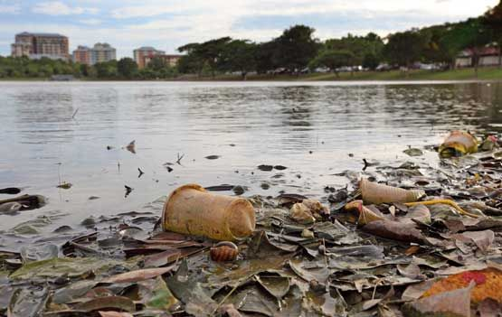 plastic and the environment essays Scientists have similarly and more simply defined marine debris as, any  manufactured or processed solid waste material that enters the ocean  environment from.