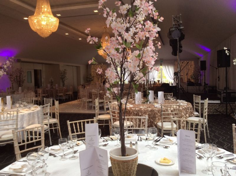 Wedding decorations newcastle choice image wedding decoration ideas wedding decoration hire newcastle choice image wedding dress junglespirit Image collections