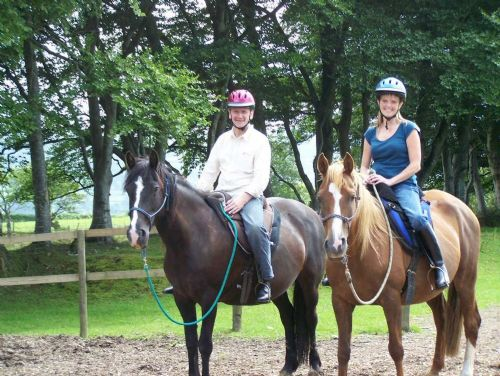 Bitless Equestrian Centre Lampeter 8 Reviews Livery