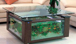 fish coffee table uk. aquariums uk related keywords suggestions