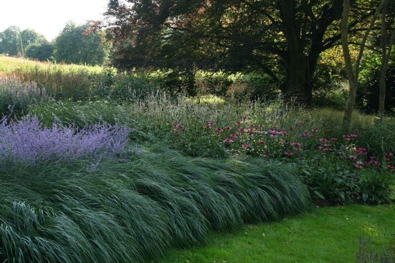 Jeremy allen garden design garden designer in for Garden design jobs essex