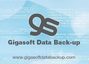 Image result for gigasoft data