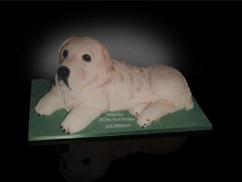 The Cake Artist - Cake Designer in East Preston ...