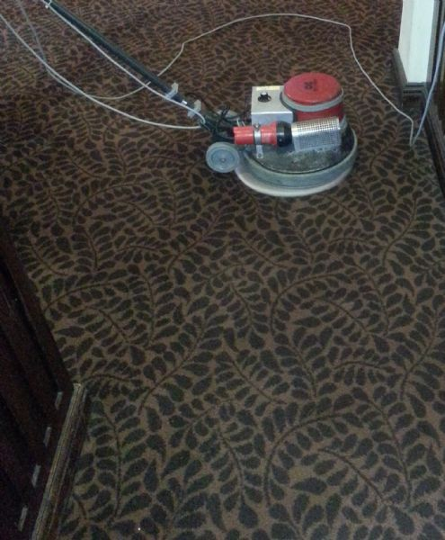 100 Carpet Cleaning Bel Air Md 10 Best Images Of