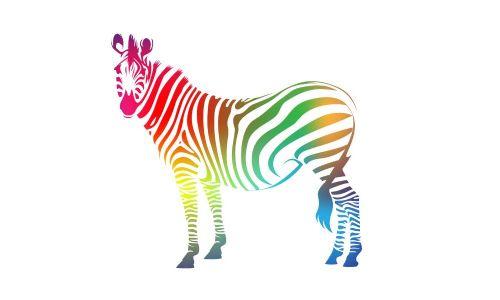 Rainbow Zebra Office Furniture Supplier In Thornbury