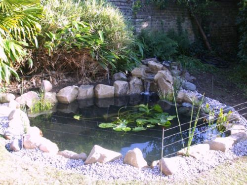 Aquajoy water gardens ltd pond cleaning company in for Pond maintenance companies