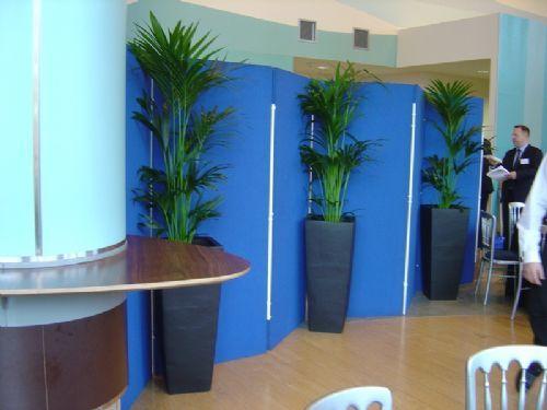 Exhibition Stand Hire Edinburgh : Greenscene interior planting plant display stand